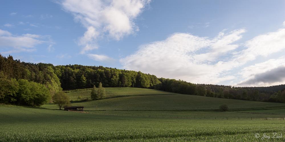 Der Blick über das Feld