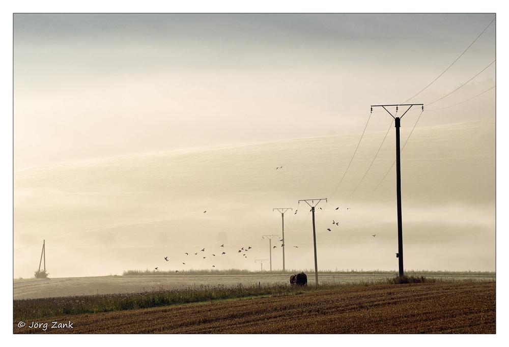 Der Blick über die Felder....