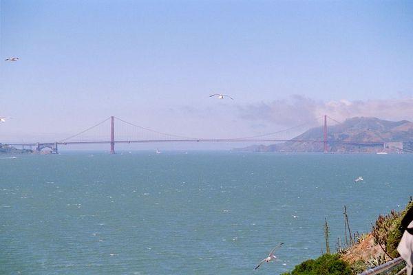 Der Blick von Alcatraz in die Feiheit