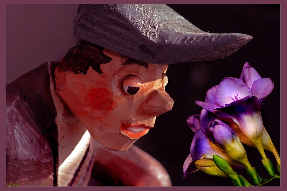 der Blumenfreund