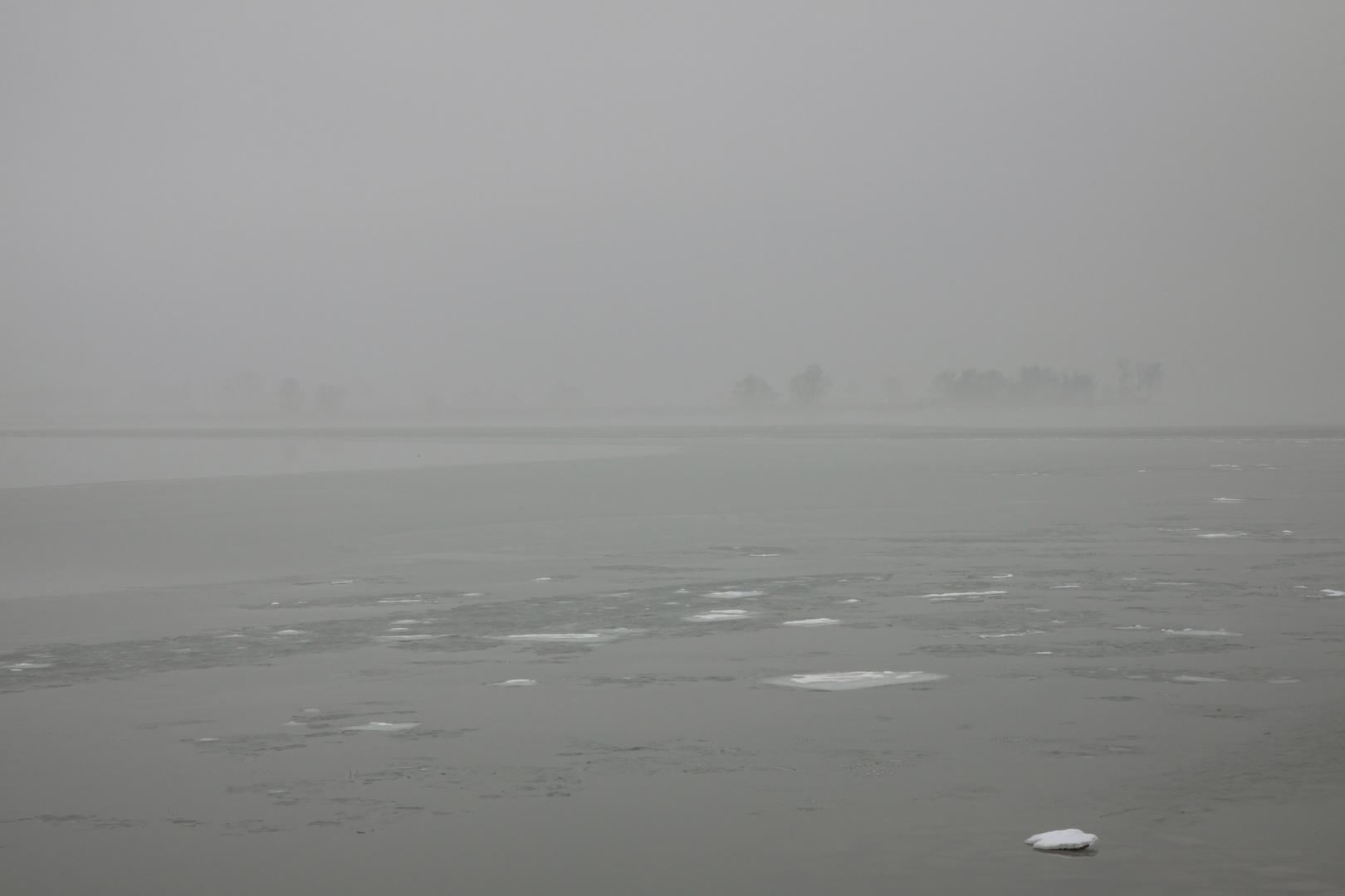 Der Bodensee als Nebelmeer