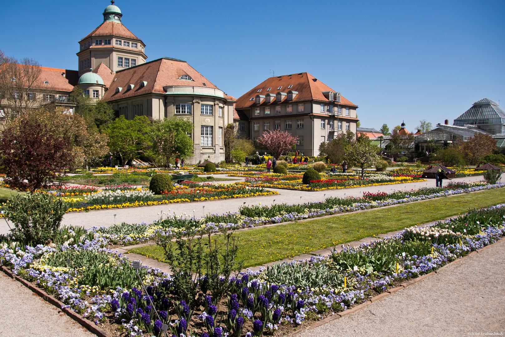 Der Botanische Garten in München - Nymphenburg (1)