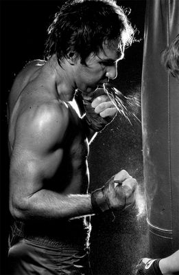 der Boxer