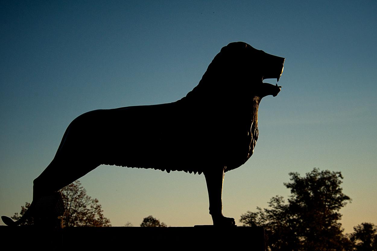 Der Braunschweiger Löwe II
