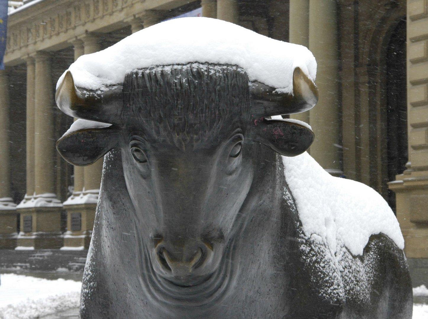 Der Bulle und der März-Schnee...