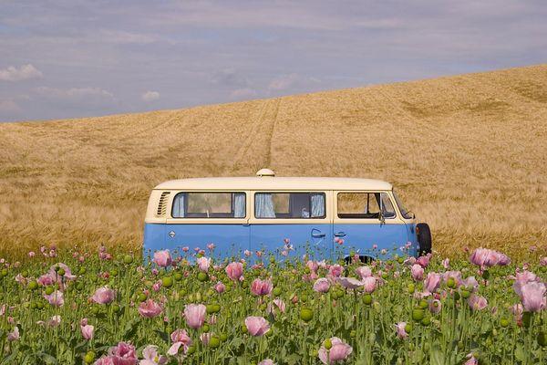 Der Bus