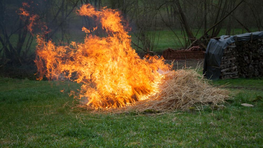 Der Butz - Die Verbrennung