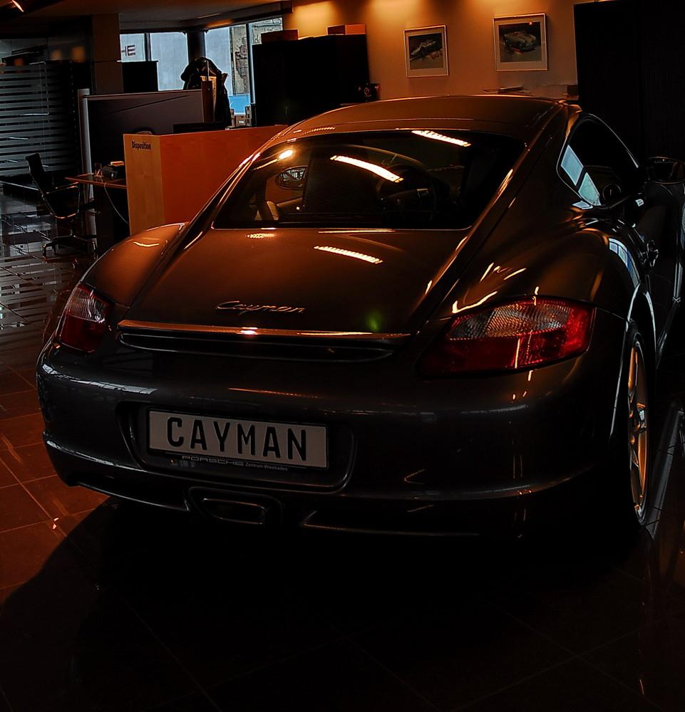 Der Cayman