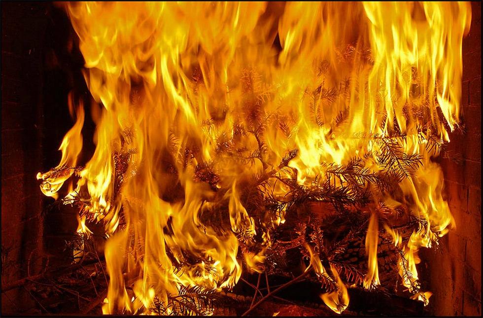Der Christbaum brennt (reload)