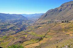 Der Colca-Canyon im Süden von Peru (3)