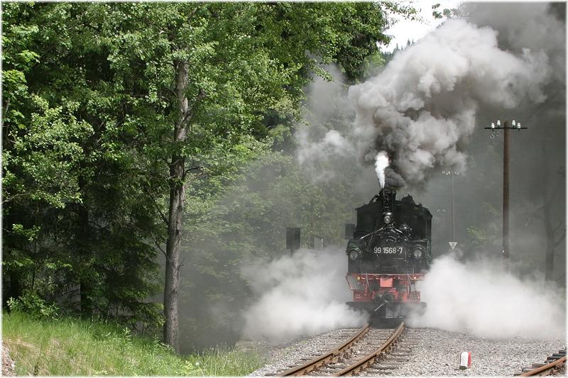 Der Dampf