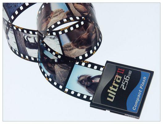 << Der DIGITALE FILM >>