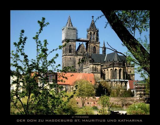 Der Dom zu Magdeburg St. Mauritius und Katharina