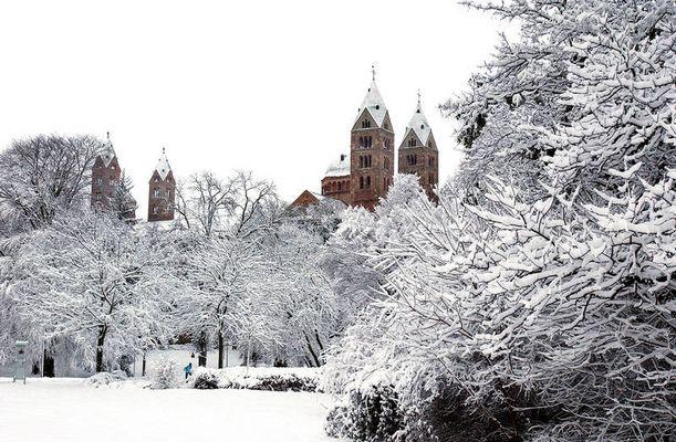 Der Dom zu Speyer im Winter