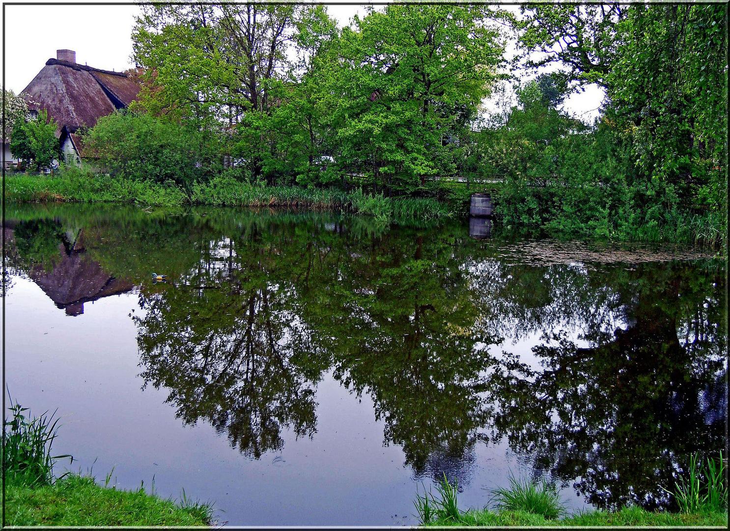 Der Dorfteich in Israelsdorf
