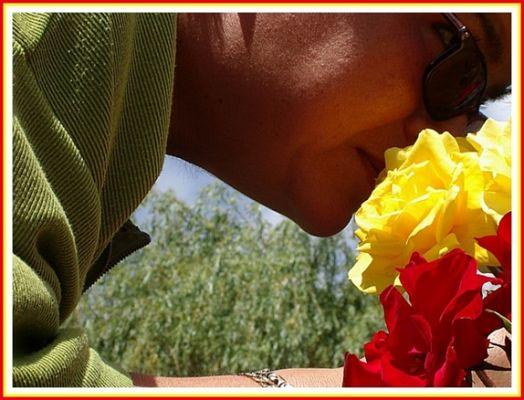...der duft der rose 2