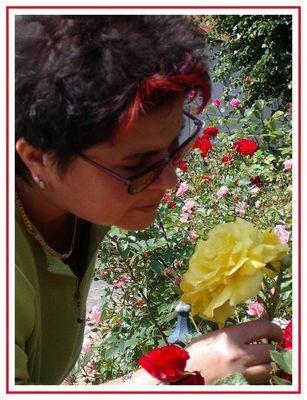 ...der duft der rose