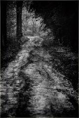 Der dunkle Weg