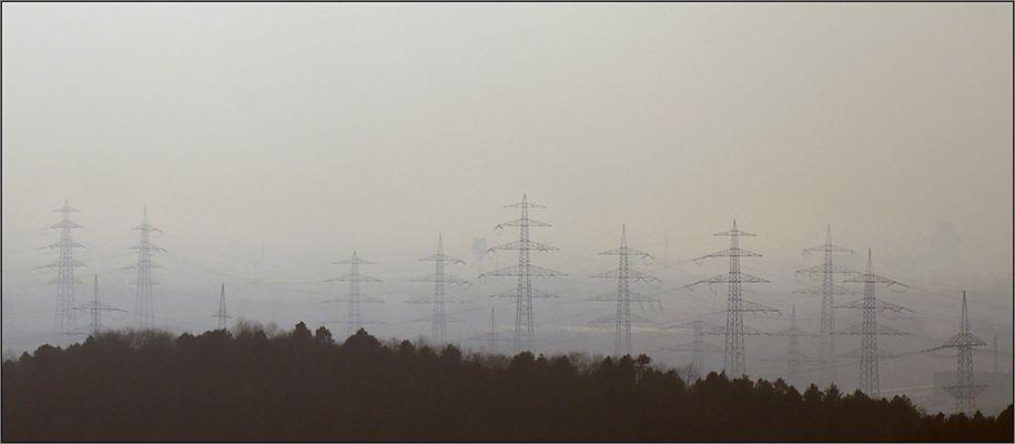 Der E-Wald von Ewald ...
