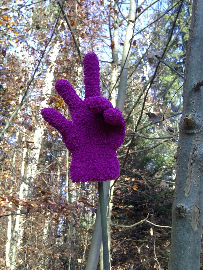 Der einsame Handschuh.