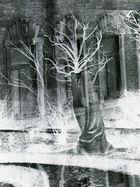 der einsame kampf mit der erinnerung vor den leeren fenstern früheren lebens