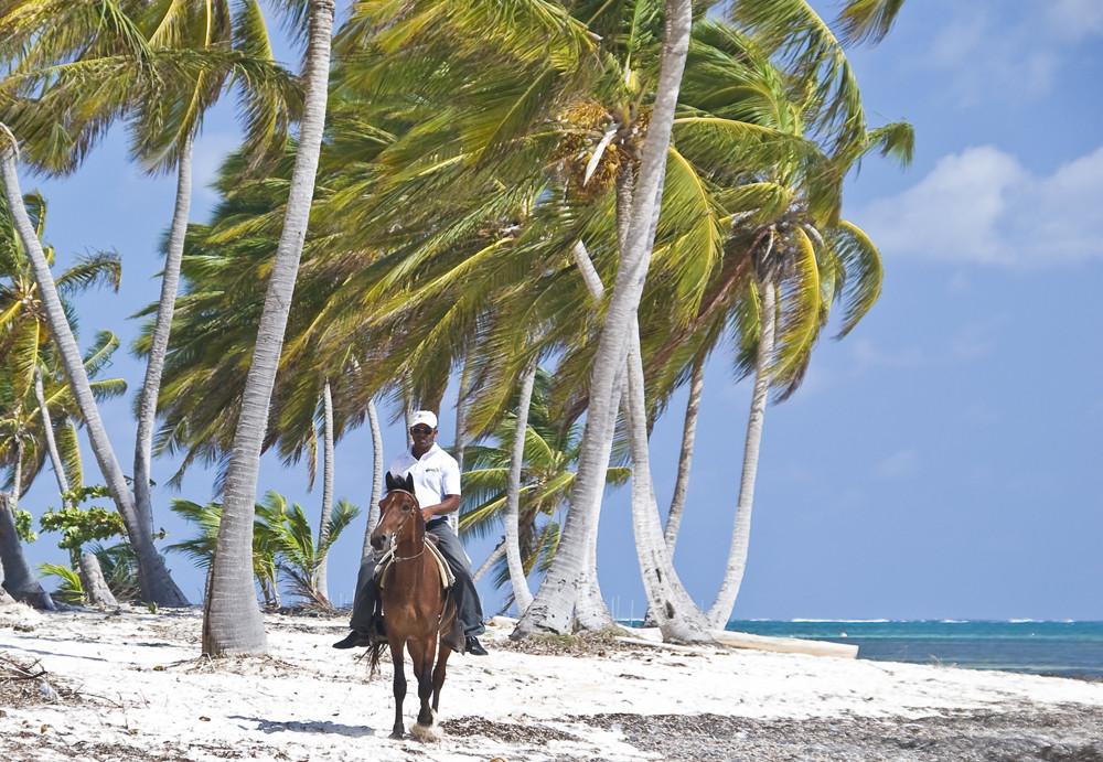Der einsame Reiter