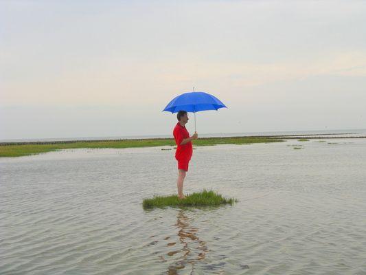 Der einsame Strandläufer
