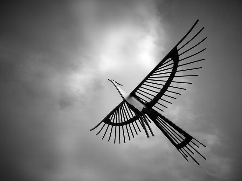 Der eiserne Vogel II