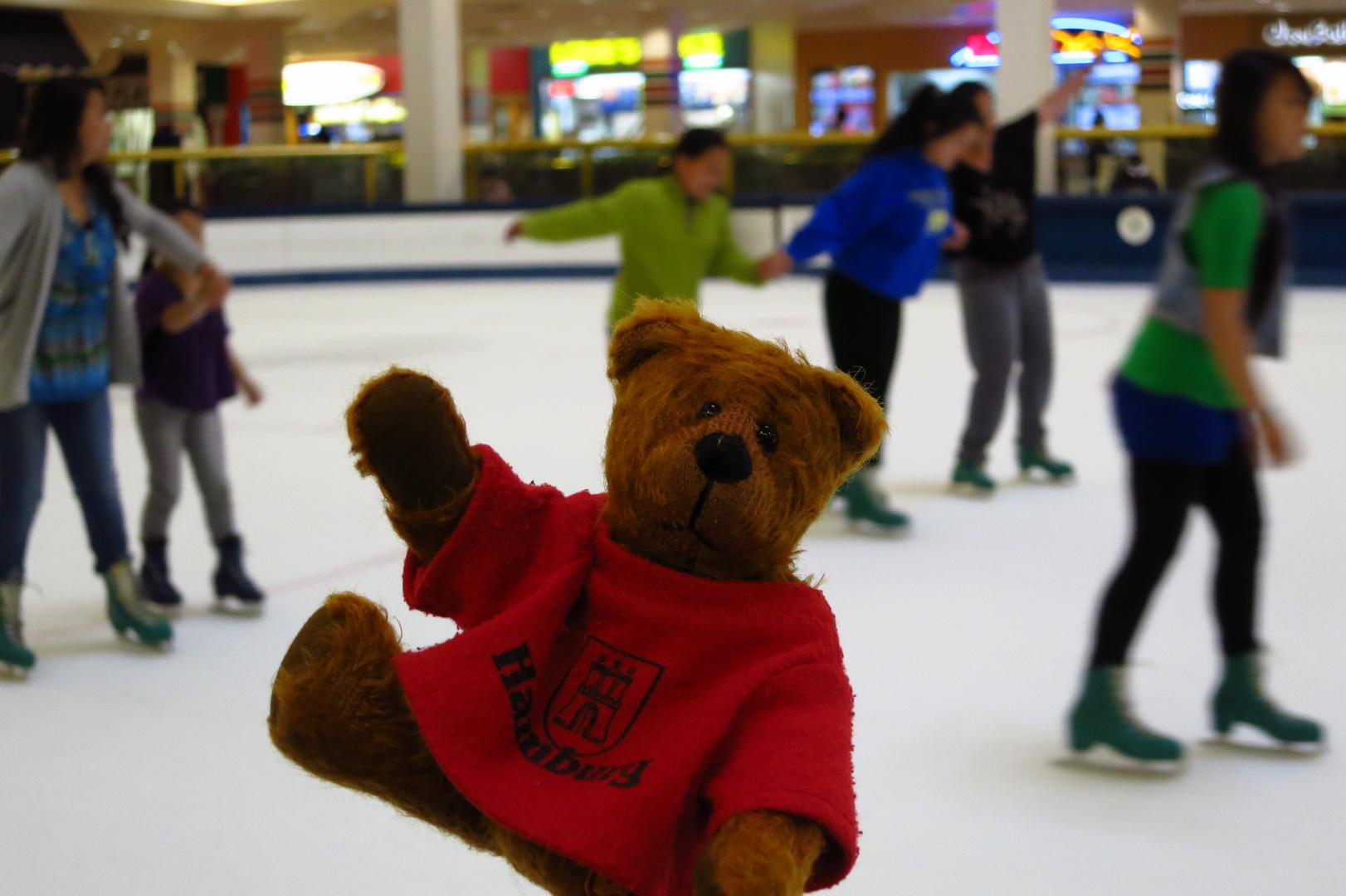 Der Eislaufbär