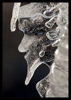 der Eisschrat