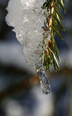 der Eistropf2