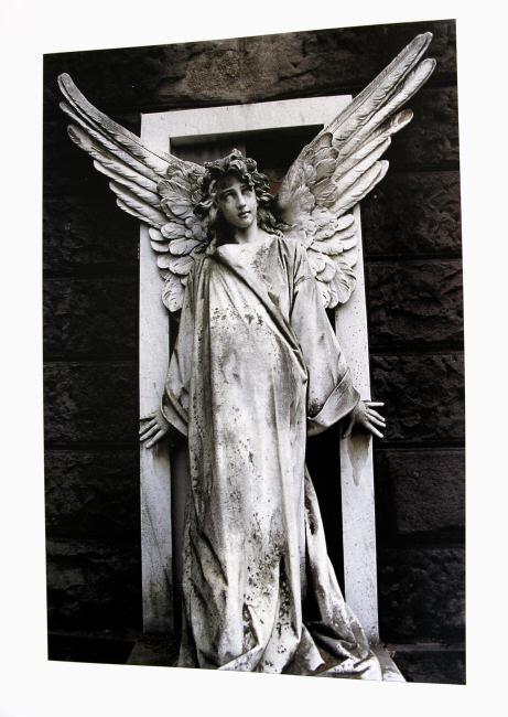 Der Engel aus dem Buch.