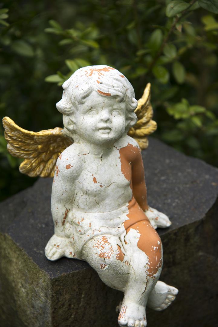 Der Engel mit den güldenen Flügeln