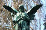 Der Engel mit der Nelke