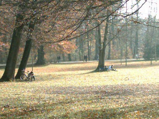 Der Englische Garten im Herbst