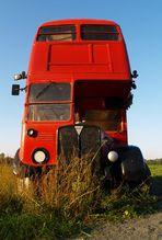 Der Erdbeerbus - Abfahrt