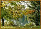 Der erste Herbstnebel... -3-