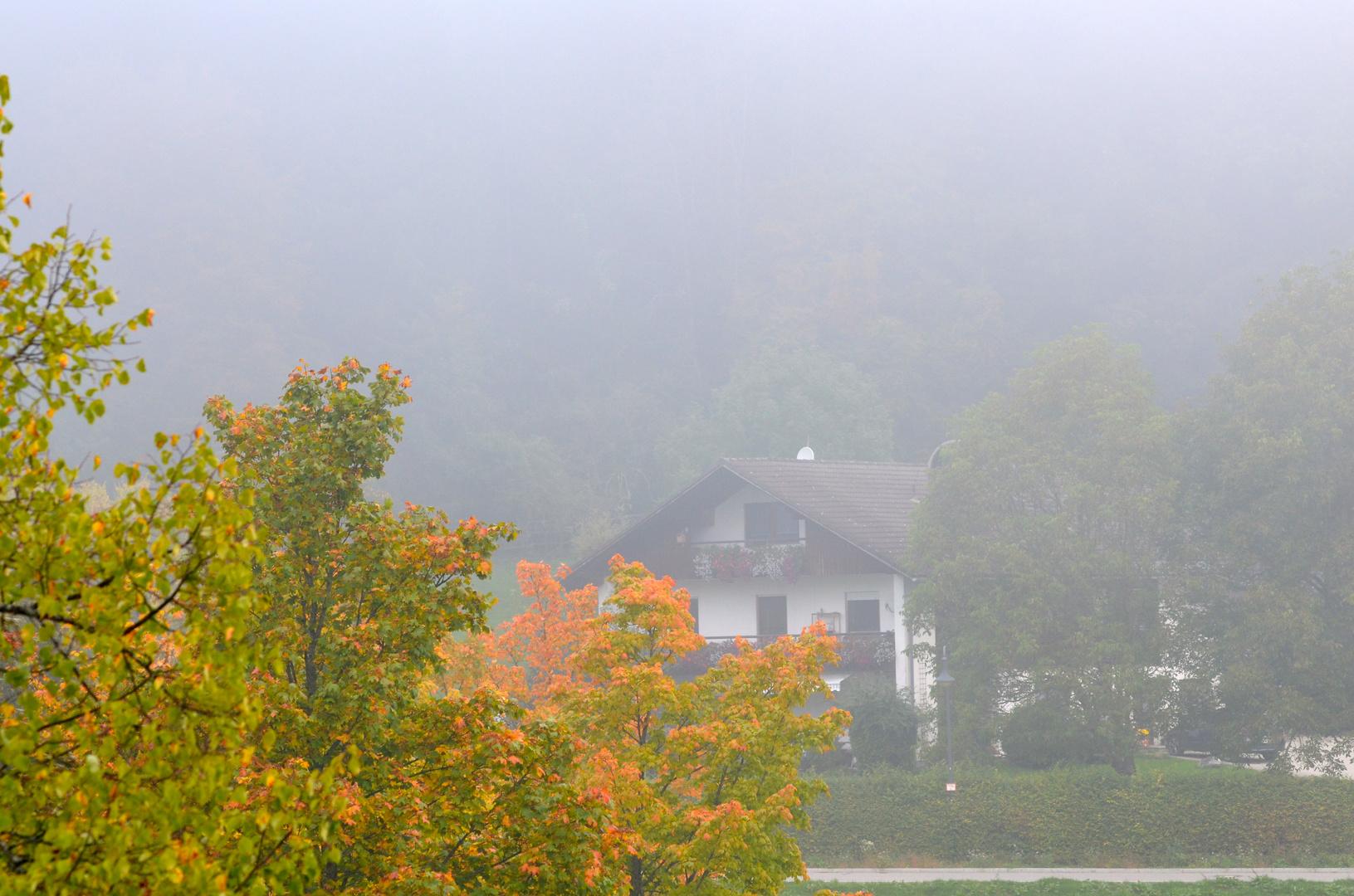 Der erste Nebel ...