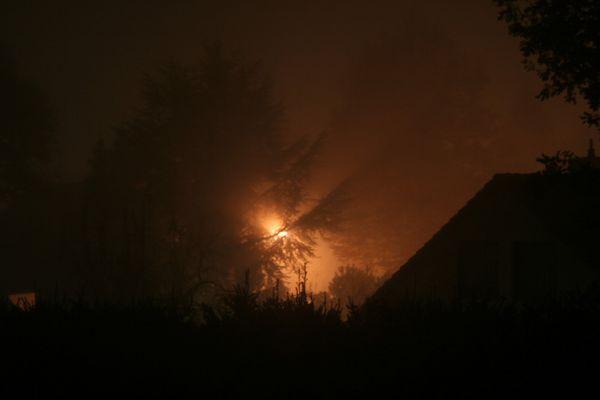 der erste Nebel in diesem Herbst...