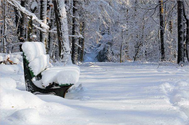 Der erste Schnee ... (2)