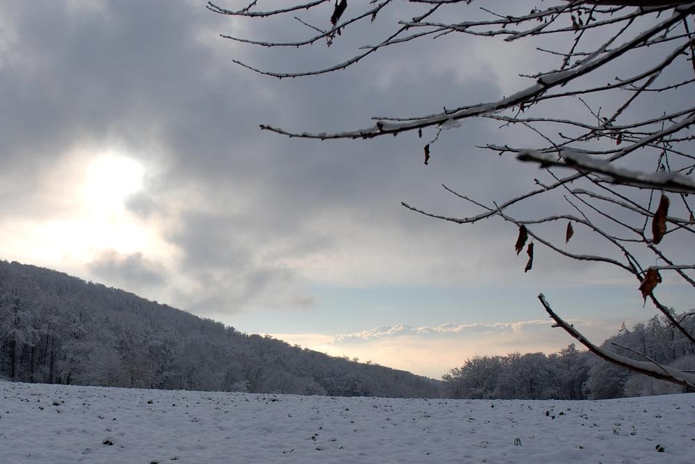 Der erste Schnee :-)