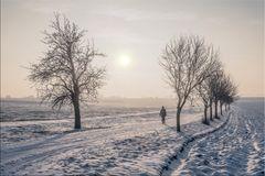 der erste Schnee im Jahr 2016