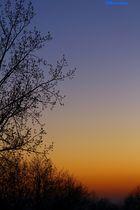 Der erste schöne Sonnenuntergang 2014
