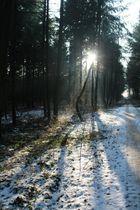 """Der erste Versuch ein Landschaftsfoto zu """"knipsen"""""""