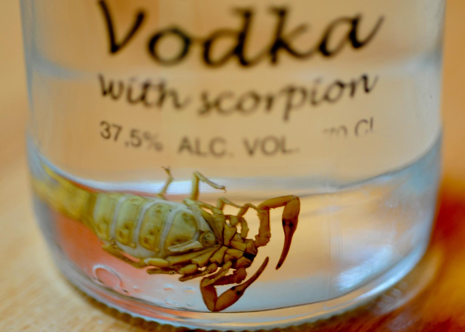 Der ertrunkene Scorpion