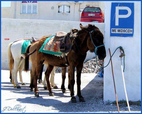 Der Esel-Parkplatz