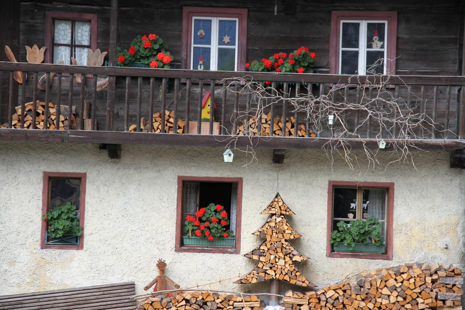 Der etwas andere Baum vorm Haus