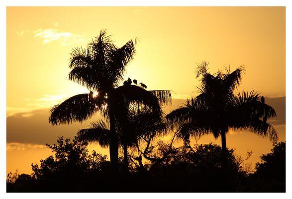 Der Everglades Nationalpark