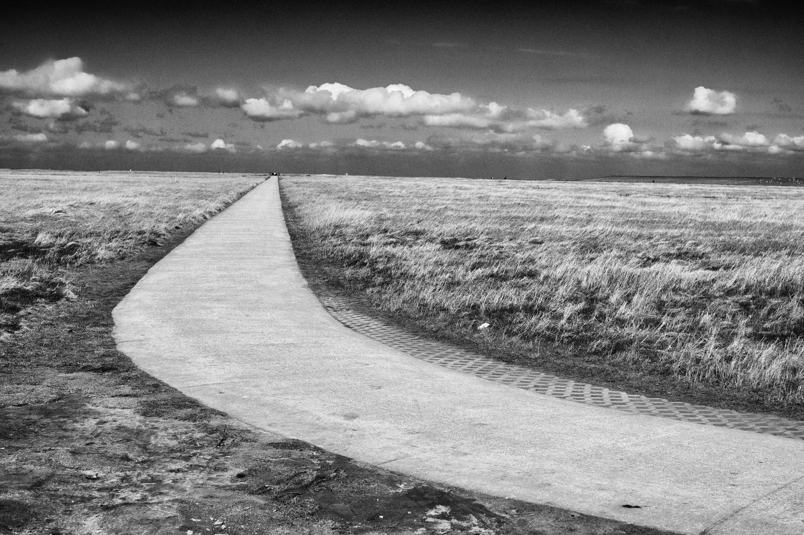 Der ewige Weg