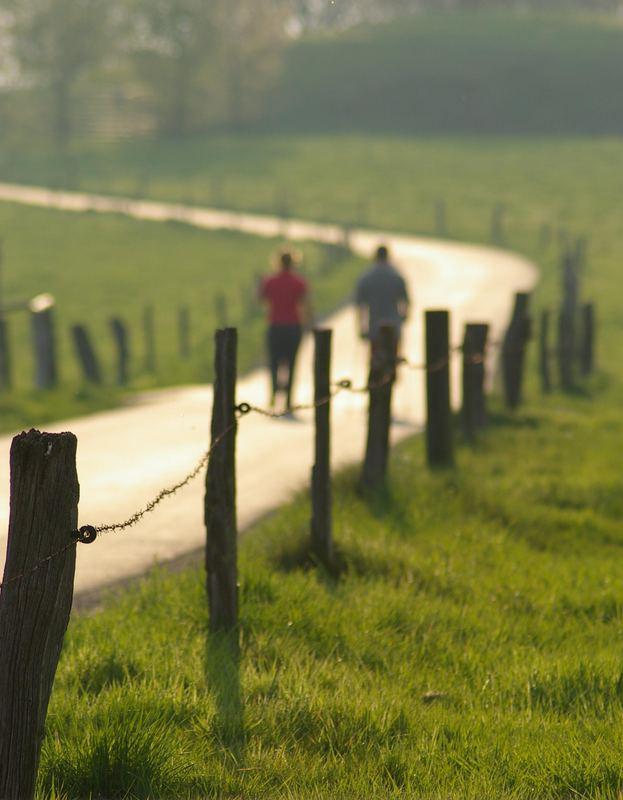 der feierabendliche Spaziergang